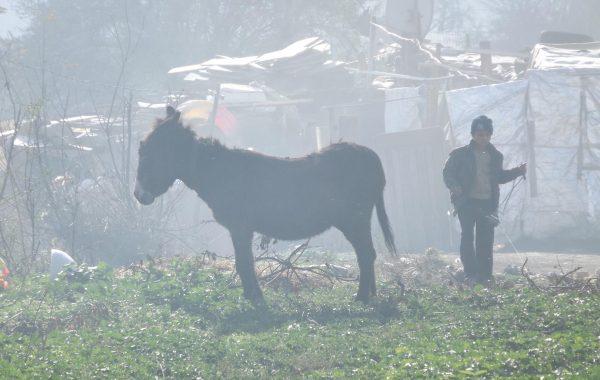 Roma Ghetto in Varna